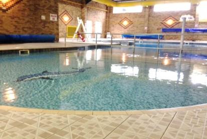 Pool Light