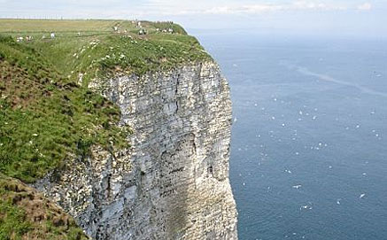 Bempton Cliffs, North Yorkshire