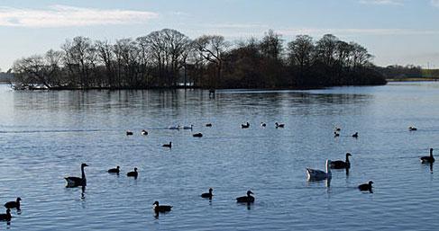 Arrange a visit to Lowcroft Caravan Park