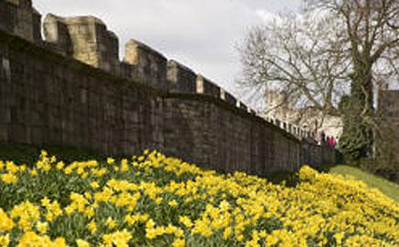 Walk the city walls