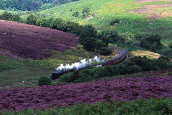 norht-york-moors-train